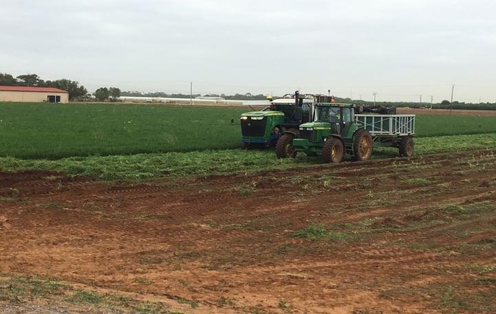 Carrot Harvester #3.jpg