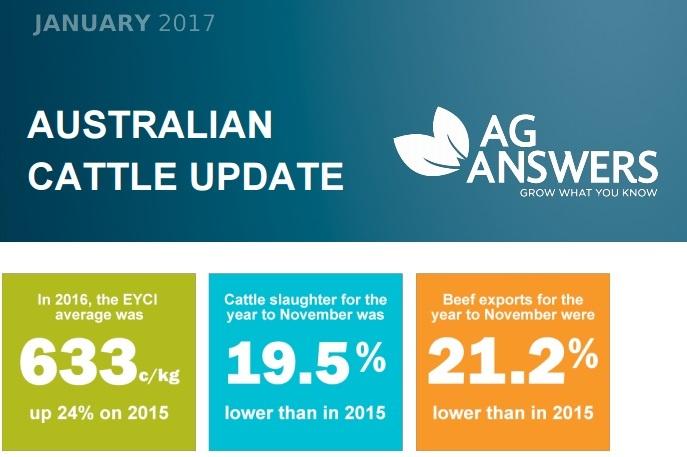australian cattle report.jpg